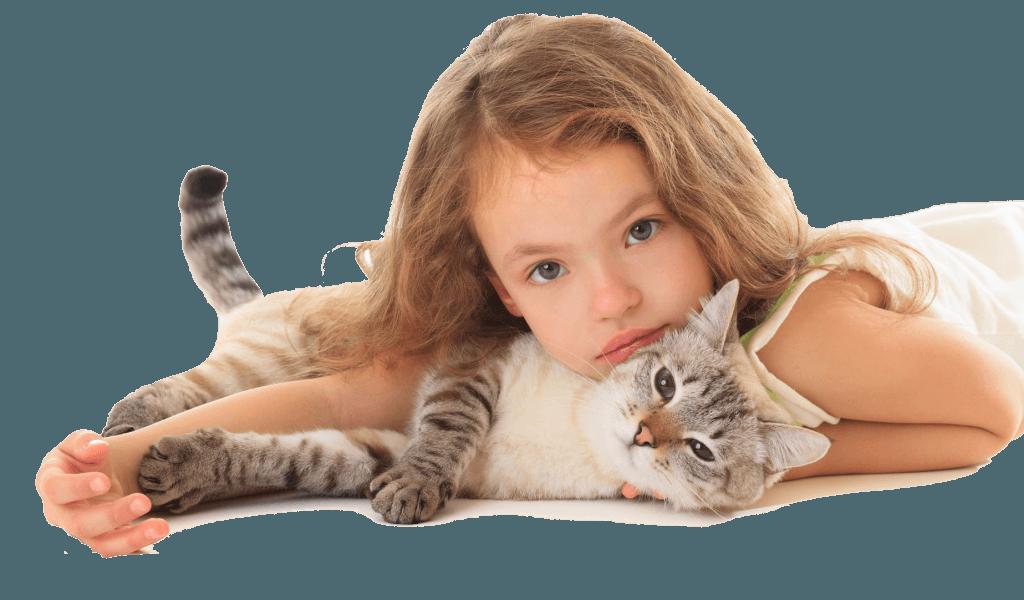 Leucemia e Inmunodeficiencia felina
