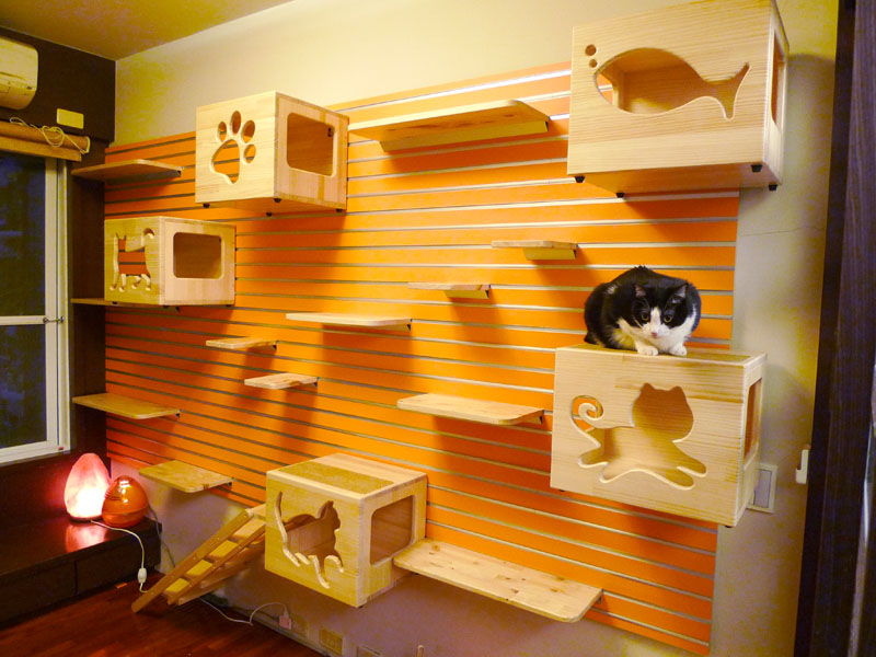 modular-cat-climbing-wall-large-01