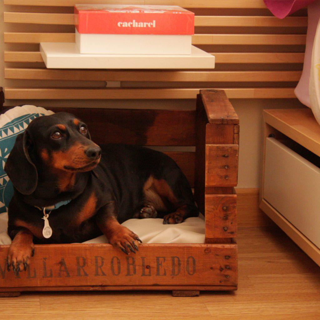 cama-perro-reciclada-madera