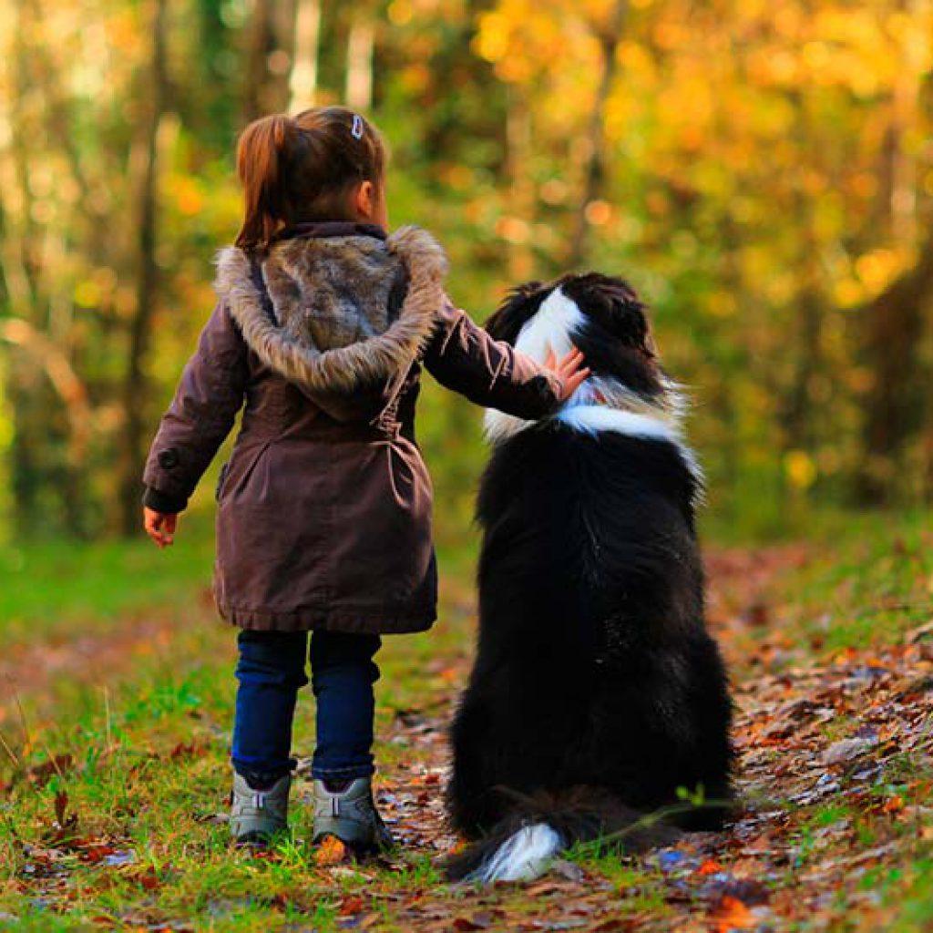 mejores-perros-raza-grande-para-ninos