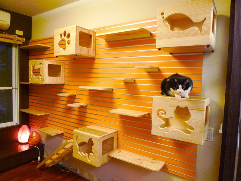 modular-cat-climbing-wall-large-01